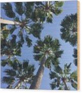 Corner Palms Wood Print