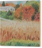 Cornfield In Autumn Wood Print