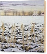 Cornfield In Winter Wood Print