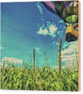 Cornfield View Hot Air Balloons Wood Print by Bob Orsillo