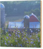 Cornflower And Barn Wood Print