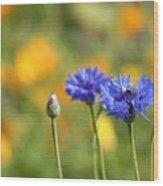 Cornflowers -1- Wood Print by Issabild -