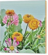 Cornflowers 20 Wood Print