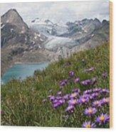 Corno Gries, Switzerland Wood Print