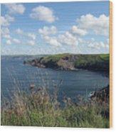 Cornwall Coast 4 Wood Print