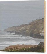 Coronado Coastline Wood Print