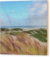 Coronado Island Wood Print