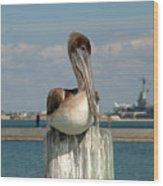 Corpus Christi Pelican Wood Print