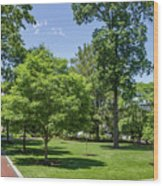 Corr Hall Green Space Wood Print