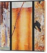 Corrugated Iron Triptych #8 Wood Print