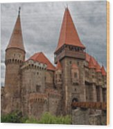 Corvin's Castle Wood Print by Yair Karelic