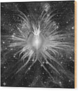 Cosmic Heart Of The Universe Bw Wood Print