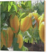 Costa Rica Star Fruit Known As Carambola Wood Print