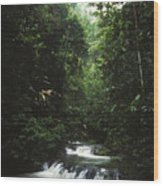 Costa Rica Waterfall In The Carocavado Wood Print by James Forte