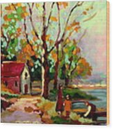 Cottage Country The Eastern Townships A Romantic Summer Landscape Wood Print