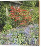 Cottage Garden Wood Print