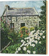 Cottage Of Stone Wood Print by David Lloyd Glover