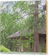Cottage Orange Island  Louisiana  Wood Print