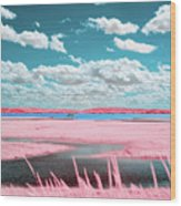 Cotton Candy Marsh Wood Print