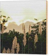 Cotton Candy Sunset 2 Wood Print