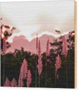 Cotton Candy Sunset 4 Wood Print