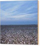 Cotton Fields At Dusk Casa Grande Arizona 2004 Wood Print