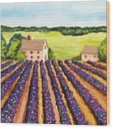 Cotton Fields Wood Print