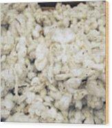 Cotton Wood Print