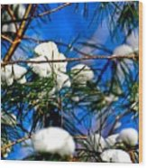 Cotton Pickin Snow Wood Print