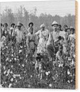 Cotton Planter & Pickers, C1908 Wood Print