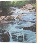 Cotton Wood Creek #4 Wood Print