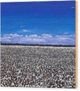 Cottonfields In Eastern Arkansas Wood Print