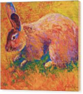 Cottontail I Wood Print by Marion Rose