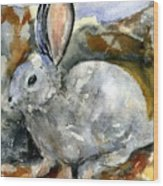 Cottontail In Camouflage Wood Print