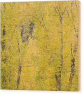 Cottonwood Autumn Colors Wood Print