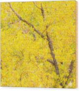 Cottonwood Colors  Wood Print