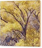 Cottonwood Golden Leaves Wood Print