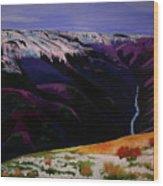 Cottonwood Idaho Wood Print