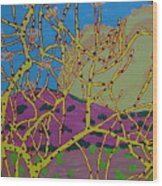 Cottonwood Number 4 Wood Print
