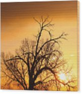 Cottonwood Sunrise - Vertical Print Wood Print