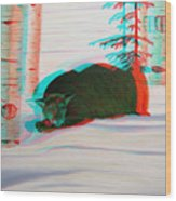 Cougar - Use Red-cyan 3d Glasses Wood Print