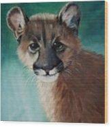 Cougar Cub Wood Print