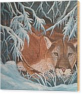 Cougar In Snow Wood Print