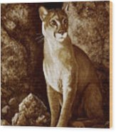 Cougar Wait Until Dark  Wood Print