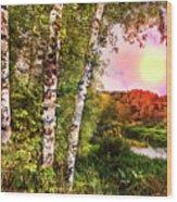 Country Birch Wood Print
