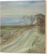 Country Coastal Road Wood Print
