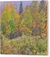 Country Colors Wood Print
