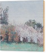 Country Cottage In Spring Time Wood Print