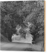 Country Drive Wood Print by Andrew Soundarajan
