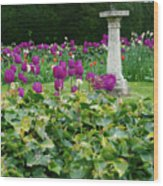 Country Garden Wood Print